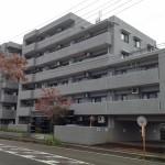 新発田市緑町の【中古マンション《フォルテコート緑町》】の写真