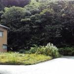 三条市月岡字田川の土地の写真