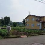長岡市関原南の土地の写真(現地)