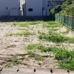 新潟市東区大形本町の土地の写真