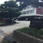 新道小学校(周辺)