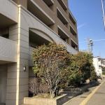 新潟市中央区上所の中古マンションの写真