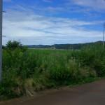 長岡市与板町江西の土地の写真