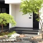 外構デザインセットプラン②】シンボルツリー:緑がお出迎える癒しの空間(1年を通して景観を楽しめる常緑樹「シマトネリコ」を、シンボルツリーとして植樹。艶のある明るい緑の葉と、初夏に咲く小さな白い花が街並みを彩ります。