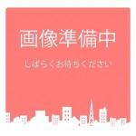新潟市秋葉区朝日の敷地図