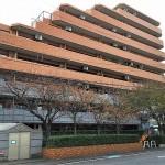 新潟市中央区鐙西の中古住宅の写真