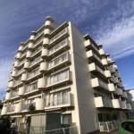 新潟市中央区堀之内南のマンションの写真