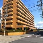 新潟市中央区下大川前のマンションの写真