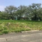 上越市荒屋の【土地】不動産情報の写真